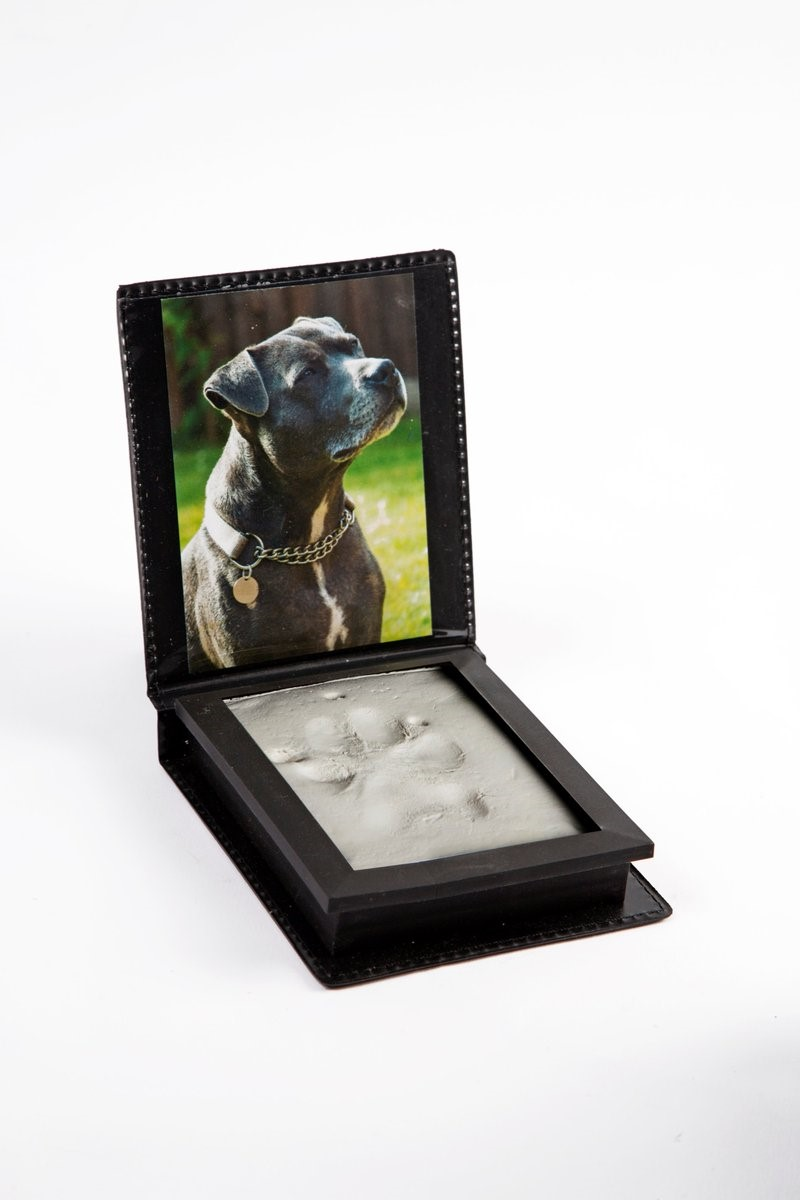 Clay Paw Print Kits V4P - Compassion Understood