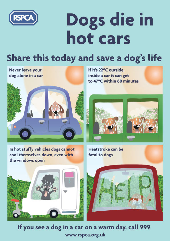 Never leave your dog in a car on a warm day. If you see a dog in distress in a hot car.Dial 999