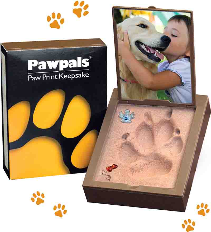 Easier to Use Than Traditional Clay Paw Print Kits